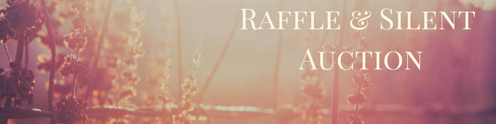 Raffle Prizes & Silent Auction Lots  